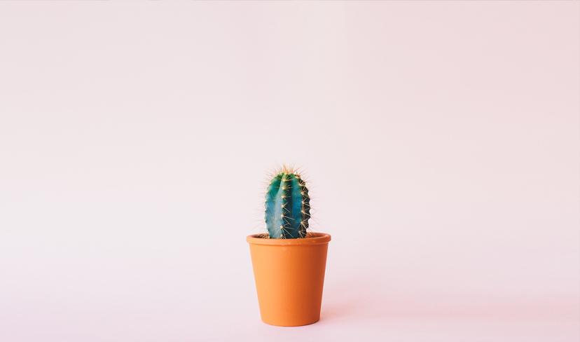 Home-Portfolio-Blog-Image-002